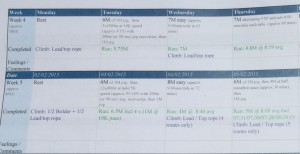 My  Weekly Training Programme